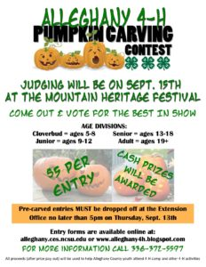 Cover photo for 4-H Pumpkin Carving Contest