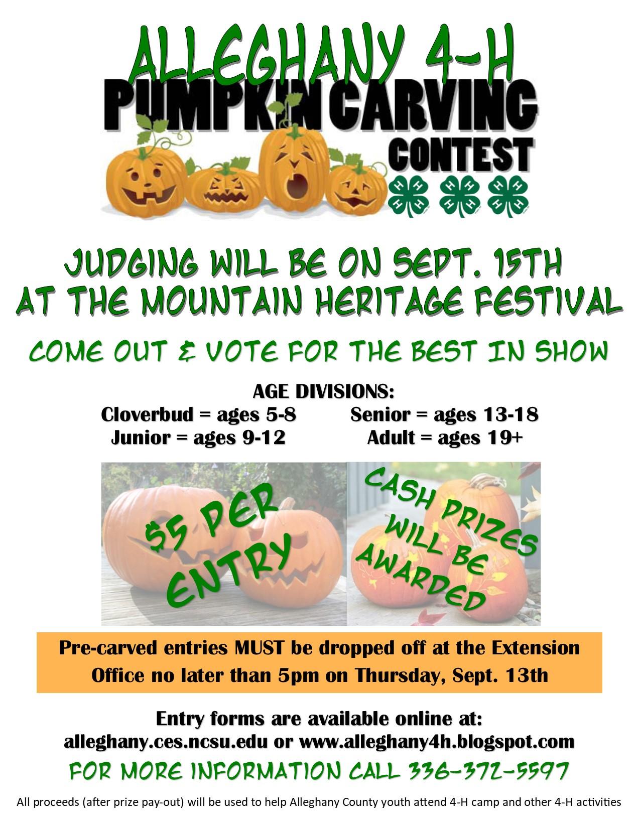 Pumpkin Carving Contest flyer image