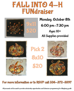 Cover photo for Fall Into 4-H FUNdraiser