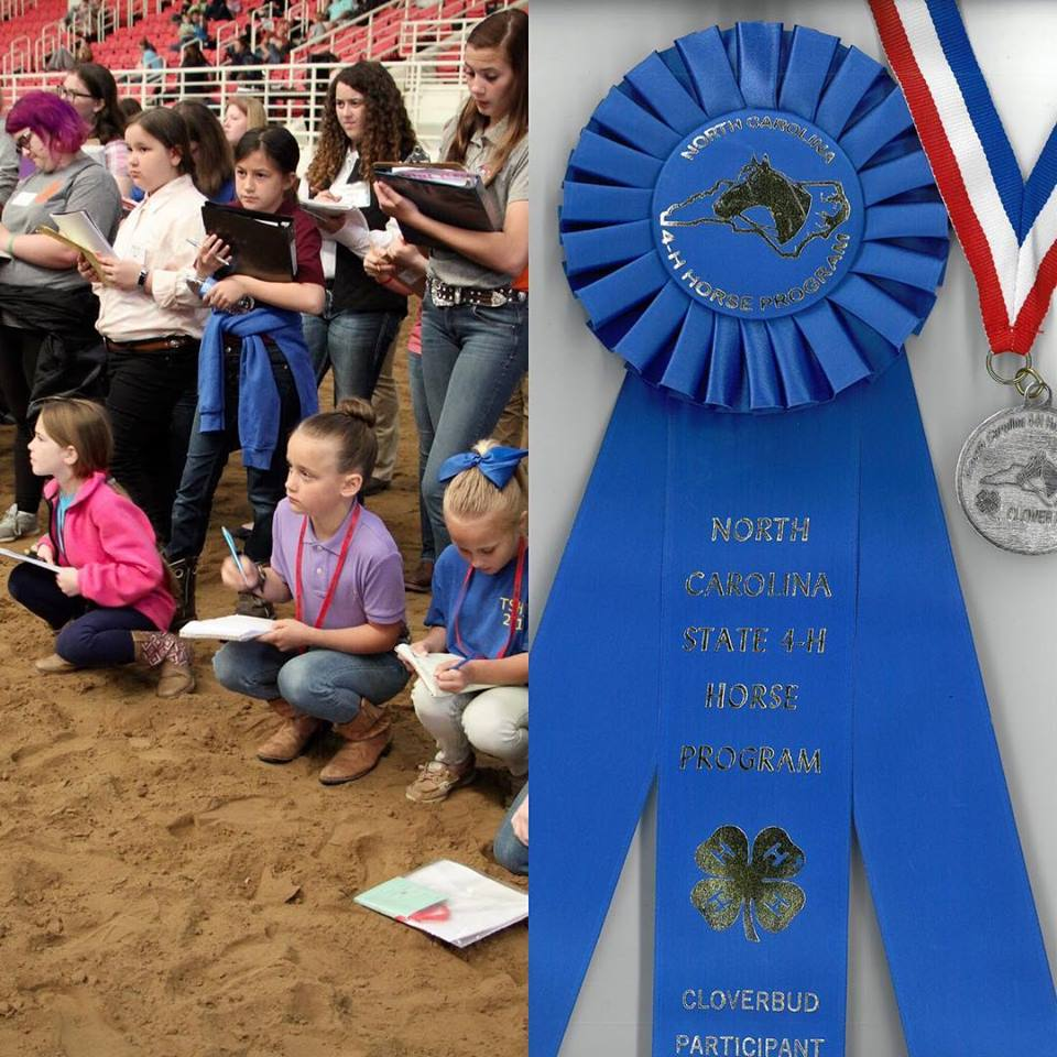 kids horse judging / blue ribbon from horse program
