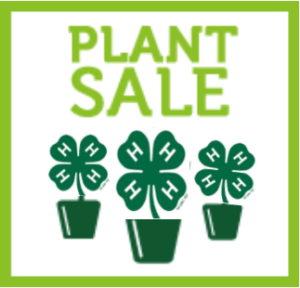 Cover photo for 2019 Alleghany 4-H Plant Sale