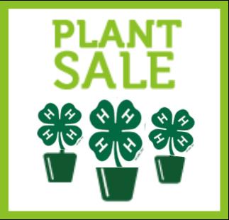 Plant sale logo image
