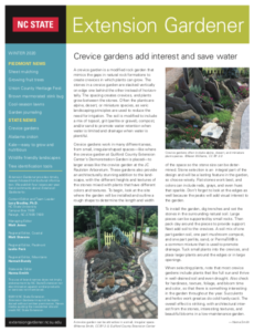 Cover photo for Winter 2020 Extension Gardener Resources