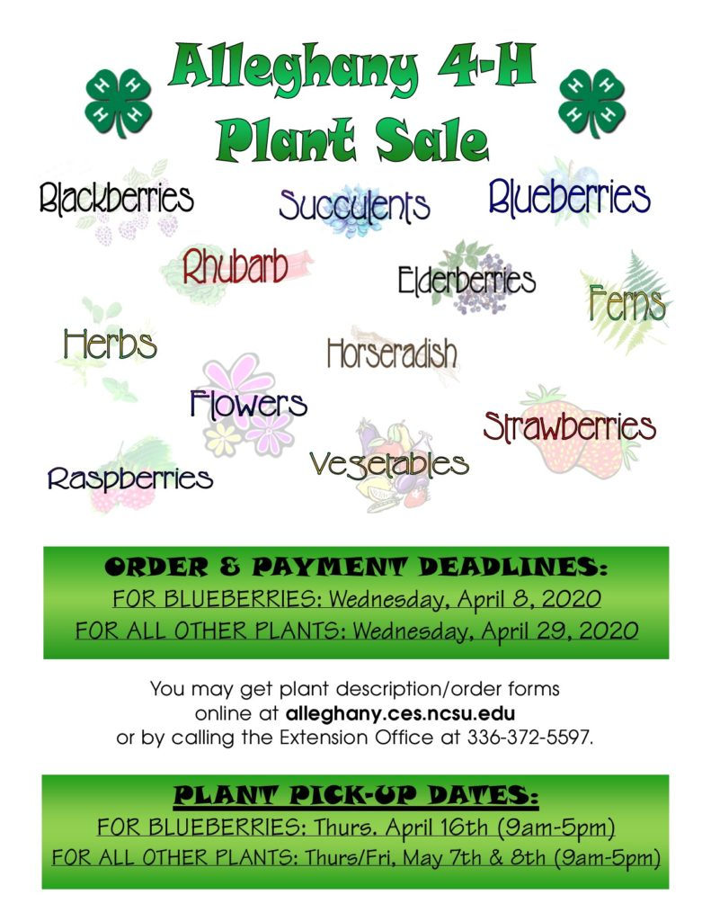 Alleghany 4-H 2020 Plant Sale Flyer