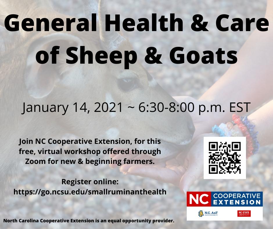 sheep & goat clinic photo